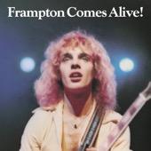 Peter Frampton - Frampton Comes Alive! (Live)  artwork