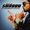 The Boombastic Collection - Best of Shaggy