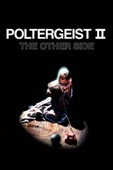 Brian Gibson - Poltergeist II: The Other Side  artwork