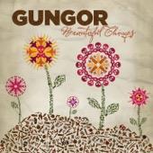 Gungor - Beautiful Things  artwork