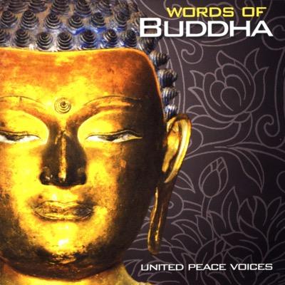 Buddha Sharanam