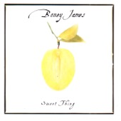 Boney James - Sweet Thing  artwork
