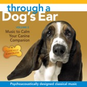 Lisa Spector & Joshua Leeds - Through a Dog's Ear: Music to Calm Your Canine Companion, Vol. 2  artwork