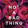 Not a Bad Thing - Single