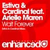 Wait Forever (Estiva Mix) [feat. Arielle Maren]
