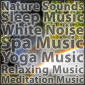 Nature Sounds With Music for Meditation, Music for Yoga, White Noise and Music for Sleep and Baby Sleep - Nature Sounds Meditation Music Sleep Music Spa Music Yoga Music Relaxing Music Sounds of Nature Sound Effects and White Noise  artwork
