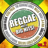 Reggae meets Big Hits