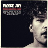 Vance Joy - Mess Is Mine  artwork