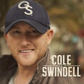 Cole Swindell - Ain't Worth the Whiskey  artwork