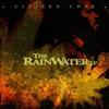 The Rainwater Lp - Citizen Cope, Citizen Cope