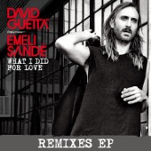 What I did for Love (feat. Emeli Sandé) [Remixes EP]