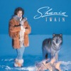 What Made You Say That - Shania Twain