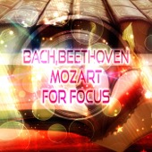Focus Music Consord - Bach, Beethoven, Mozart for Focus – Exam Study Music, Concentration and Mind Power, Study Music Collection, Music to Increase Brain Power, Meditation & Effective Learning, Relaxing Piano  artwork