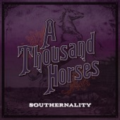 A Thousand Horses - Southernality  artwork