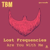 Lost Frequencies - Are You With Me (Radio Edit) Grafik