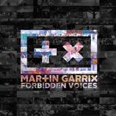 Martin Garrix - Forbidden Voices artwork