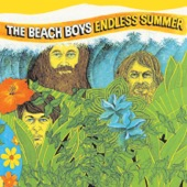 The Beach Boys - Endless Summer  artwork