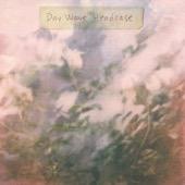 Day Wave - Headcase - EP  artwork