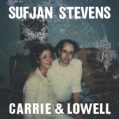 Sufjan Stevens - Carrie & Lowell  artwork