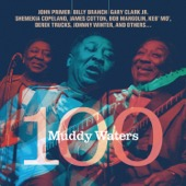 Muddy Waters 100 - Muddy Waters 100  artwork