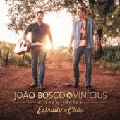 João Bosco & Vinicius E Seus Ídolos: Estrada De Chão - João Bosco & Vinicius, João Bosco & Vinicius