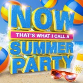 Various Artists - Now That's What I Call a Summer Party  artwork