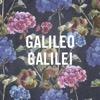 Galileo Galilei – 嵐のあとで
