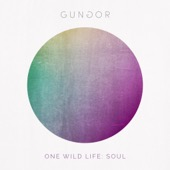 Gungor - One Wild Life: Soul  artwork