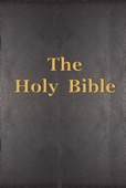 The World English Bible (WEB) - The Holy Bible artwork