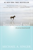 Michael A. Singer - The Untethered Soul  artwork
