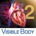 3D Heart & Circulator...