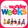 Domus Technica - The Wonder Weeks artwork