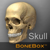 头骨医学教学软件 BoneBox™ – Skull Viewer for Mac