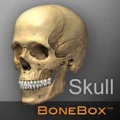 头骨医学教学软件 BoneBox™ – Skull Viewer