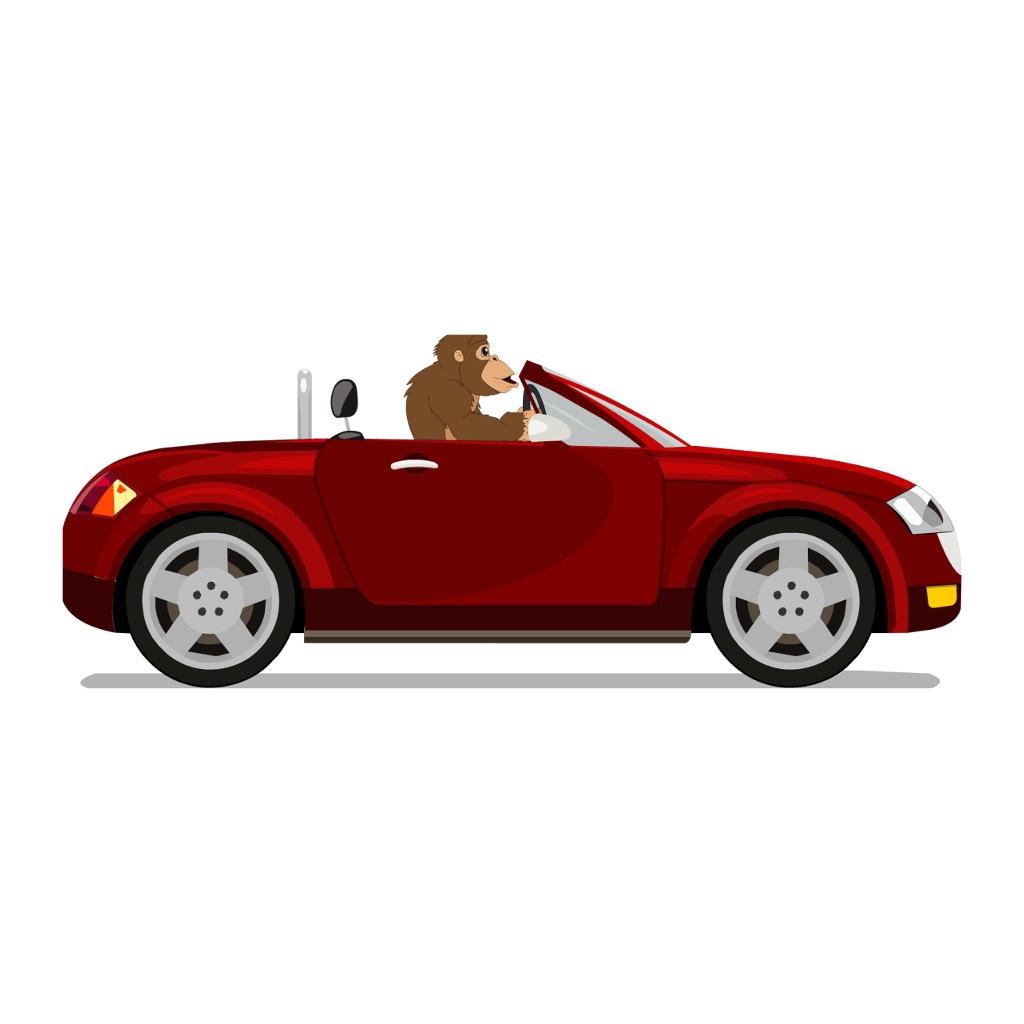 Drive Chimp Drive