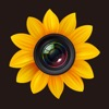 Photo Manager Pro for iPhone / iPad