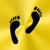 Palm Shadow Apps LLC - Footsteps - Pedometer artwork