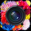 蜷川実花監修 無料のカメラフィルター加工と写真共有アプリcameran - Recruit Holdings Co.,Ltd.