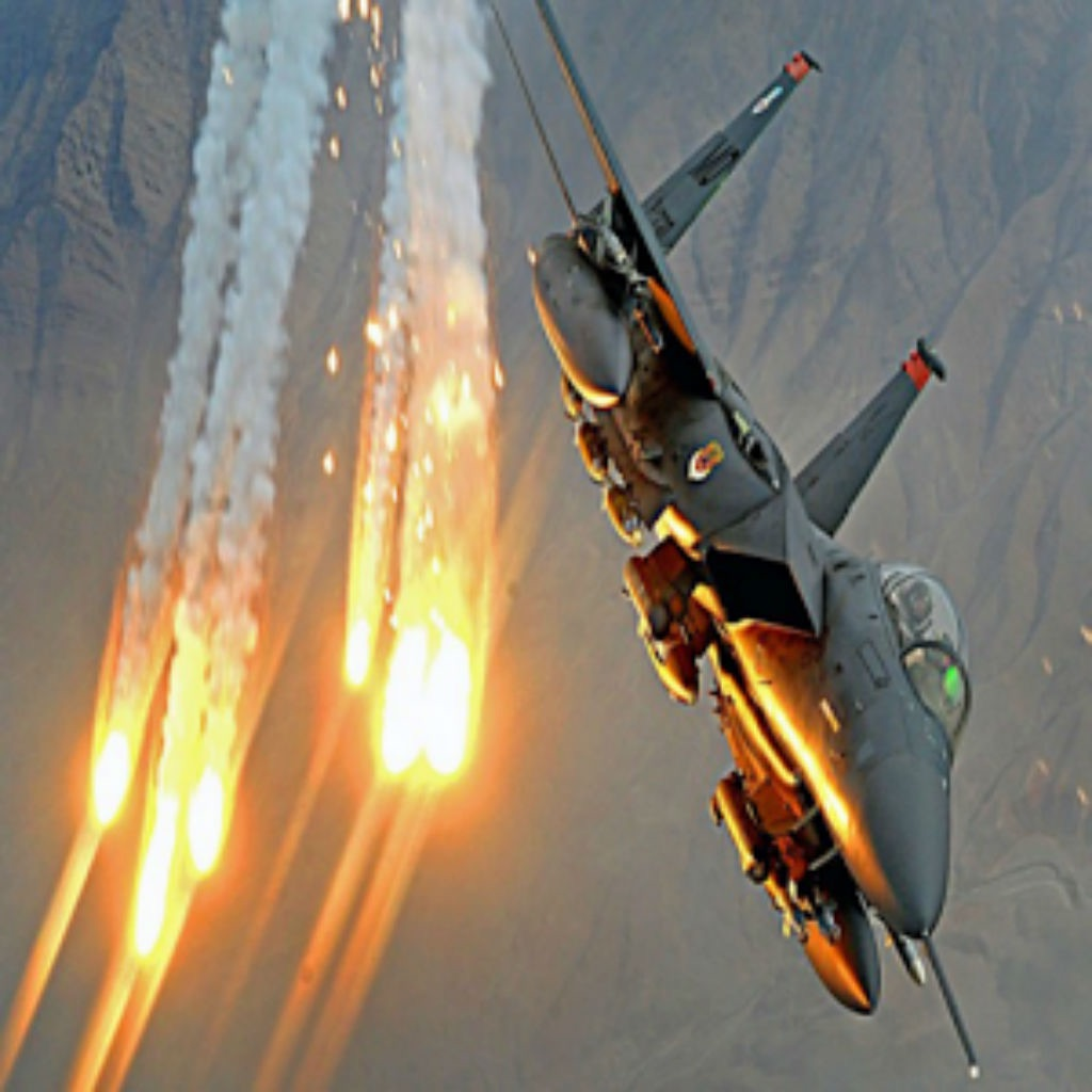 Aircraft strike pilot