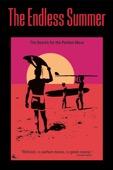 Bruce Brown - The Endless Summer  artwork