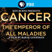 Cancer: The Emperor of All Maladies - Cancer: The Emperor of All Maladies  artwork
