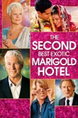 John Madden - The Second Best Exotic Marigold Hotel  artwork