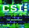 CSI: Crime Scene Investigation (Soundtrack from the TV Show)
