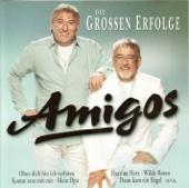 Amigos: Die grossen Erfolge - Amigos