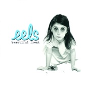 Eels - Your Lucky Day in Hell artwork
