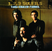1, 2, 3 Soleils (Live à Bercy)
