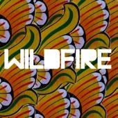 Wildfire SBTRKT Ustaw na muzykę na czekanie