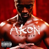 Akon - Trouble  artwork