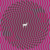 Download Cryptograms - Deerhunter on iTunes (Psychedelic)