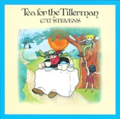 Tea for the Tillerman (Remastered)